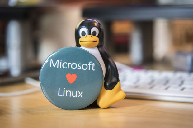 ms_love_linux